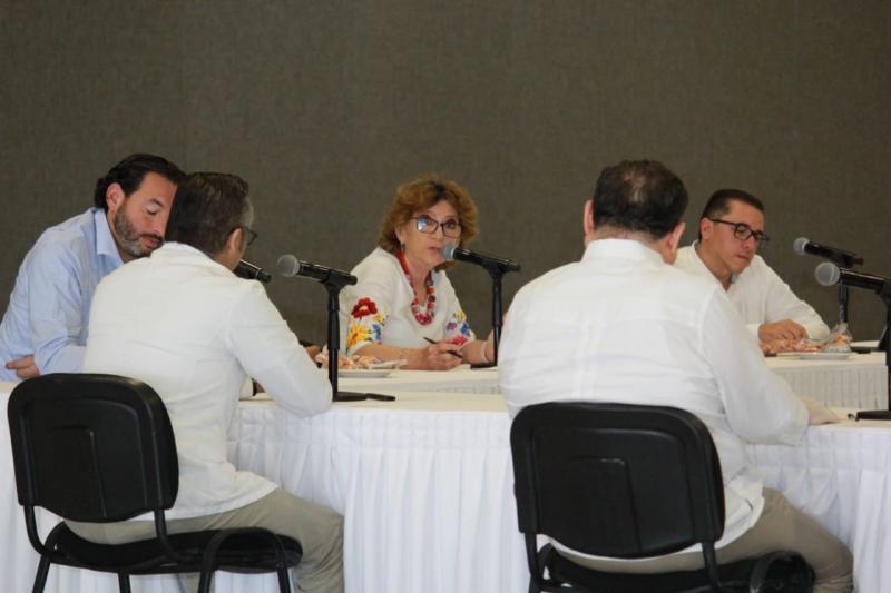 La secretaria General de Gobierno, María Fritz Sierra, pide a senadores y diputados federales por Yucatán gestionar ante la Federación los apoyos necesarios para respaldar a los yucatecos ante la contingencia sanitaria